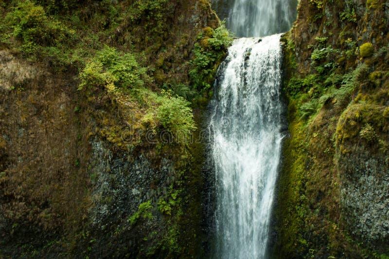 Nw-vattenfall royaltyfri foto