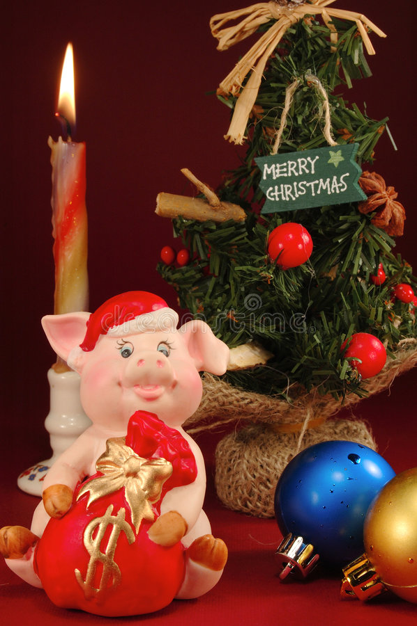 ny świnia zdjęcie royalty free