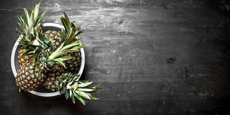 Ny ananas i en bunke arkivfoto