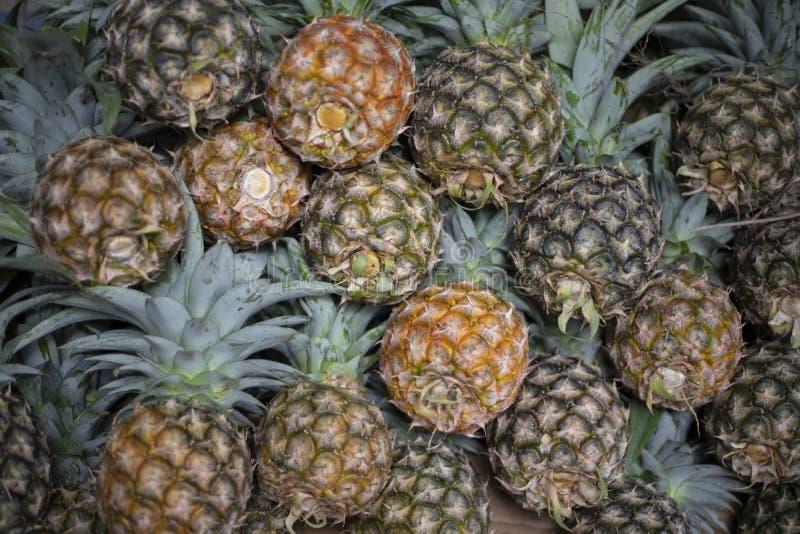Ny ananashögcloseup Mogen ananashög på organisk lantgårdmarknad Exotiskt fruktfoto för bakgrund royaltyfria foton