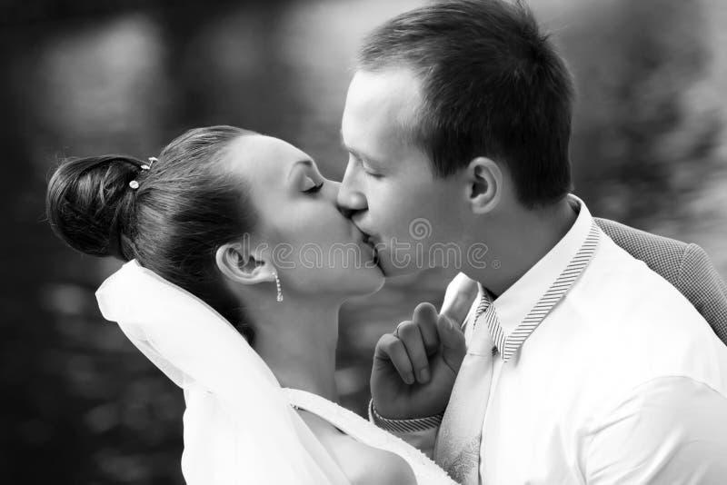 Ny-att gifta sig par royaltyfri fotografi