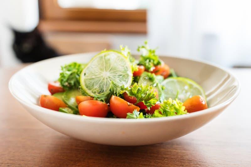 Ny avokado och tomatsallad arkivbilder