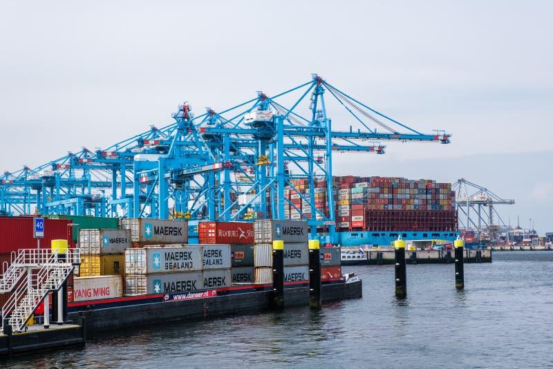 Ny behållareterminal med ett stort behållareskepp och i förgrunden ett mindre inlands- behållareskepp i porten av Rotterdam royaltyfria bilder