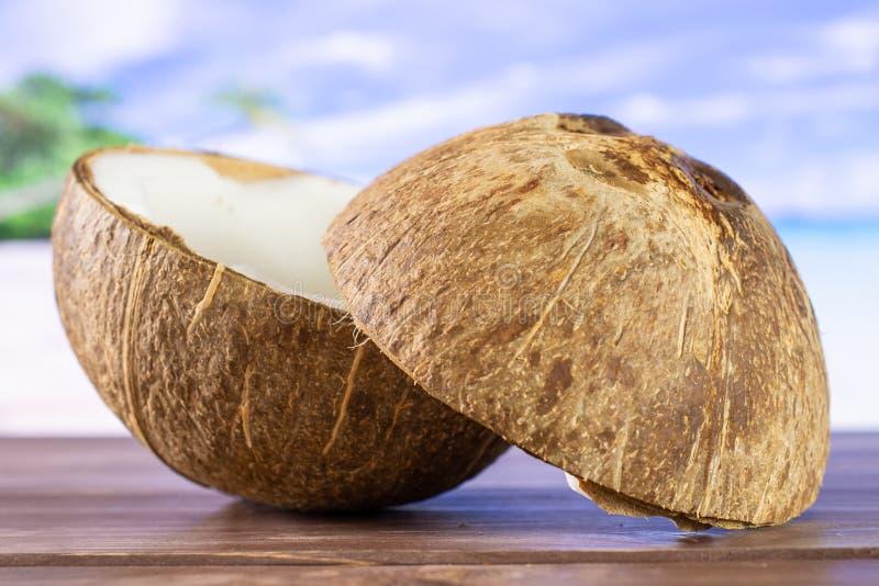 Ny bio kokosnöt på stranden fotografering för bildbyråer