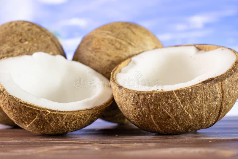 Ny bio kokosnöt på stranden royaltyfria bilder