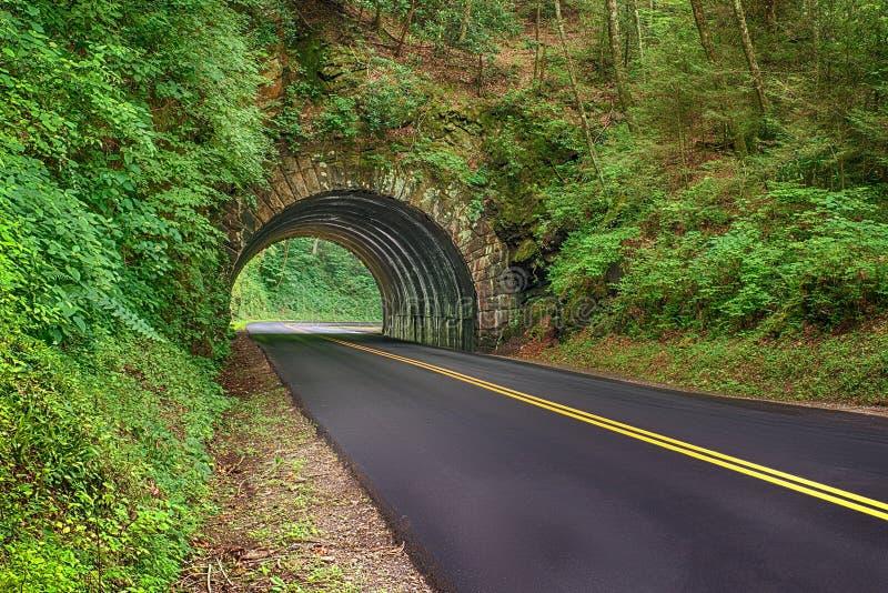 Ny Blacktopväg till och med rökiga berg royaltyfri foto