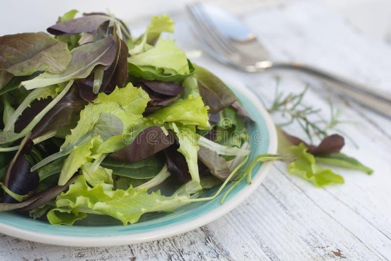 Ny blandad gr?n sallad i den runda plattan, lantlig vit tr?bakgrund Sund mat, bantar begrepp arkivfoto