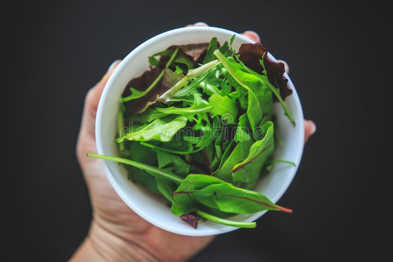 Ny blandad sallad med gr?n och purpurf?rgad saftig f?rg i den vita bunken p? svart bakgrund som uppifr?n tas arkivfoton