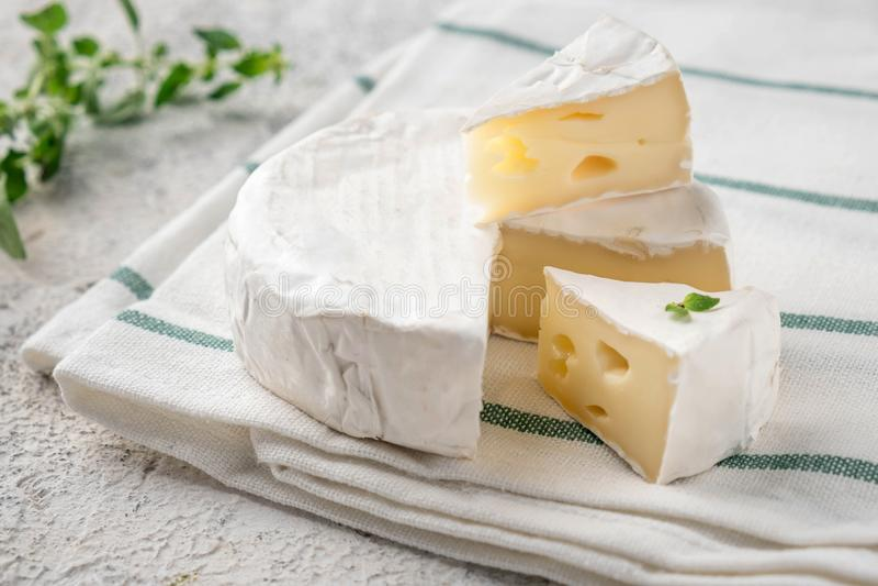 Ny Brie Italienska antipastimellanm?l Fransk camembertost royaltyfri foto