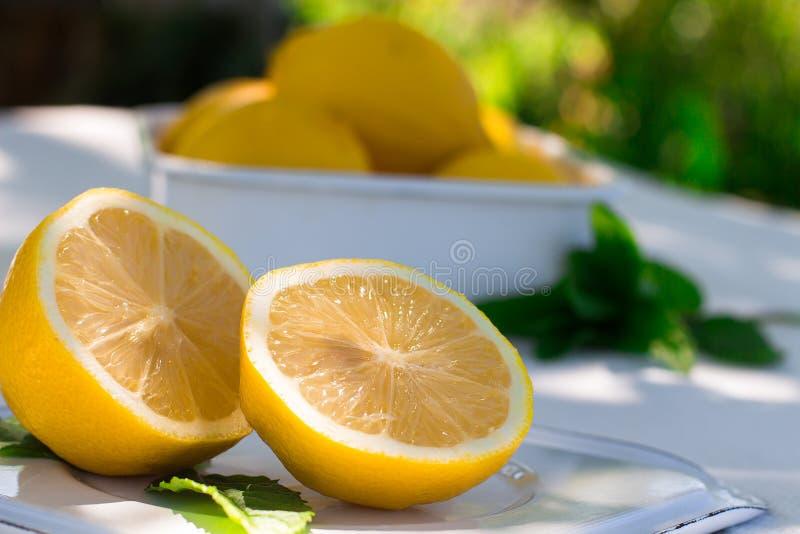 Ny citron och en kvist av mintkaramellen på naturlig bakgrund royaltyfria bilder