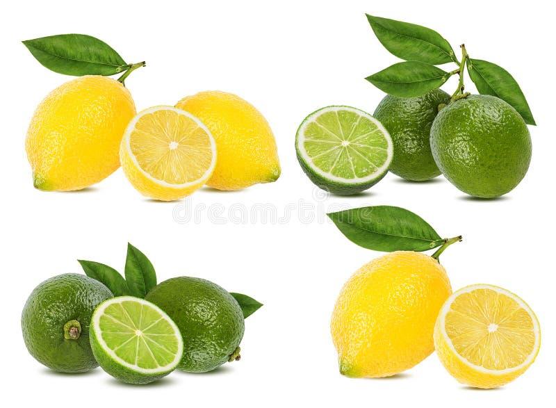 Ny citron och limefrukt som isoleras p? vit royaltyfria foton