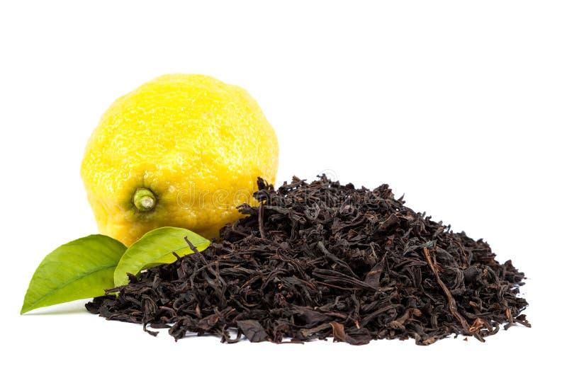 Ny citron och svart te för sidor på en vit bakgrund arkivbilder
