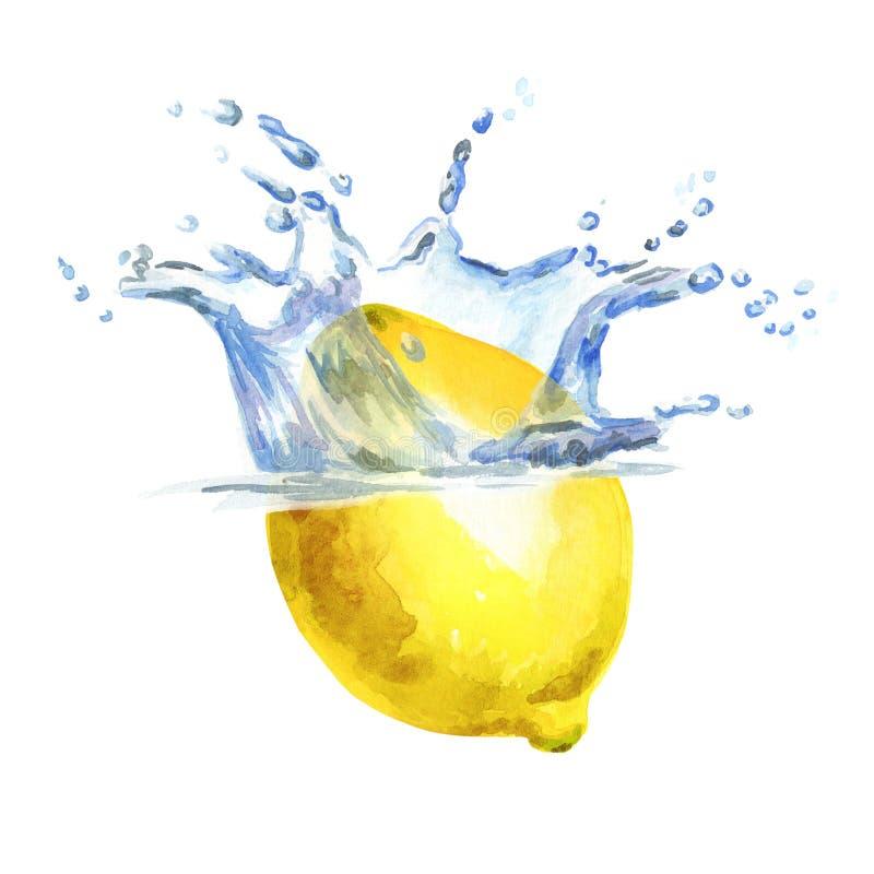 Ny citron som faller in i vatten som isoleras på vit bakgrund Dragen illustration för vattenfärg hand stock illustrationer