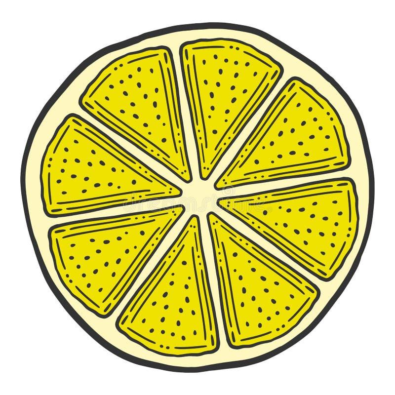 Ny citronskiva, halva av apelsinen Vektor i klotter och att skissa stil royaltyfri illustrationer