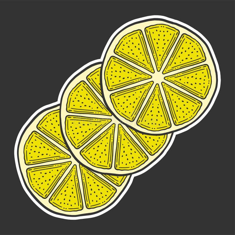 Ny citronskiva, halva av apelsinen Vektor i klotter och att skissa stil vektor illustrationer