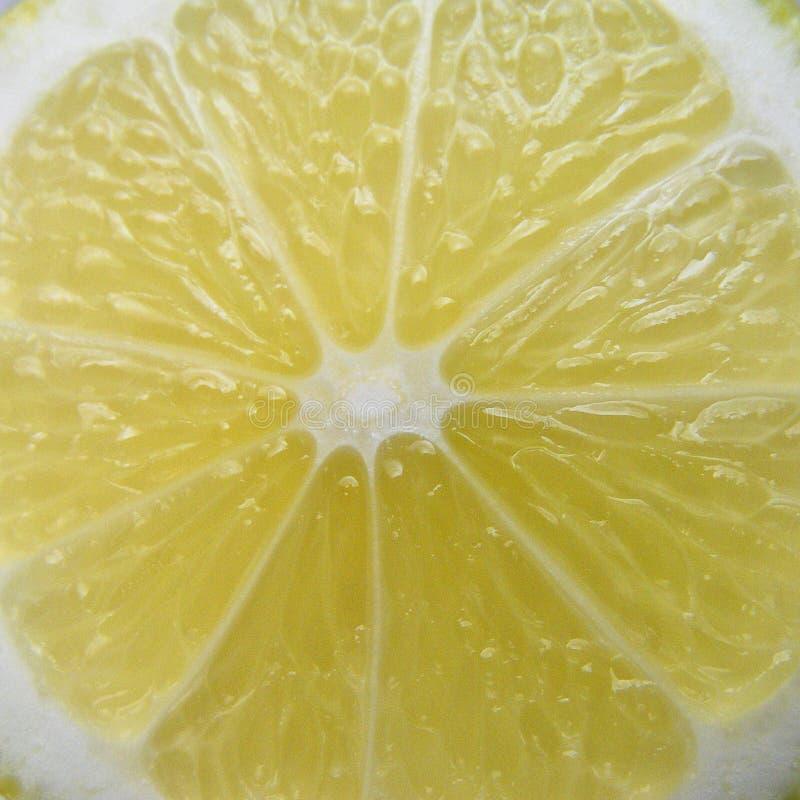 ny citronskiva royaltyfria foton