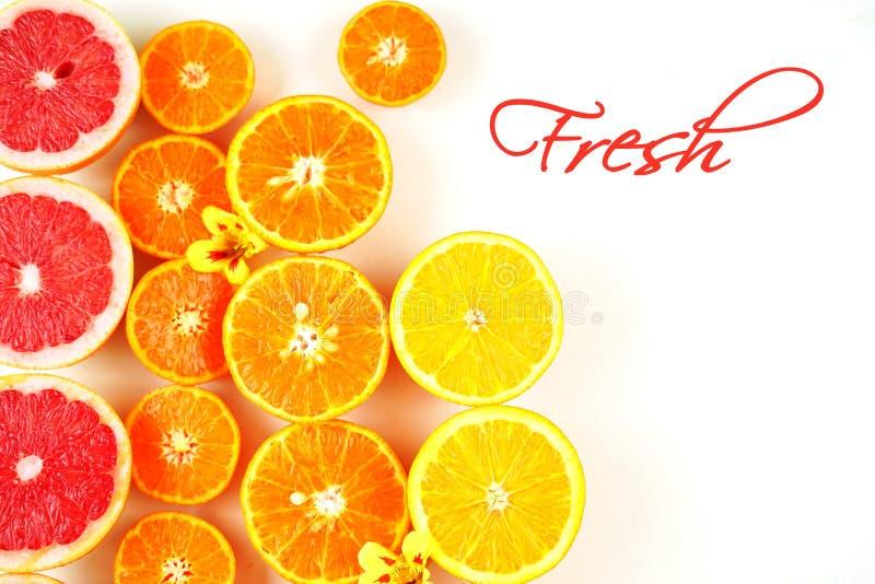 Ny citrusfrukt med kopieringsutrymme och ny text royaltyfri bild