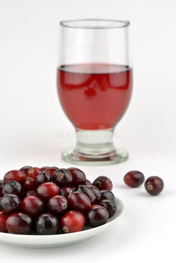 Ny cranberries och fruktsaft royaltyfri foto