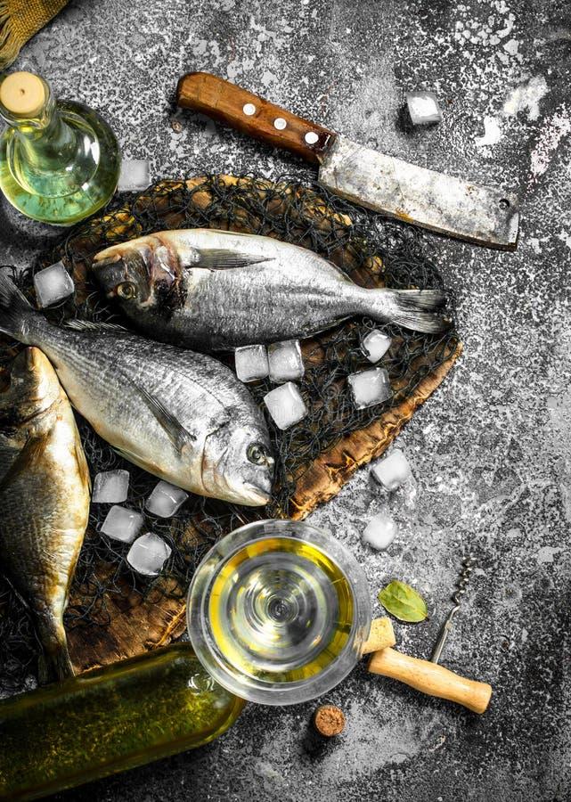 Ny Dorado fisk med iskuber och vinexponeringsglas royaltyfri fotografi