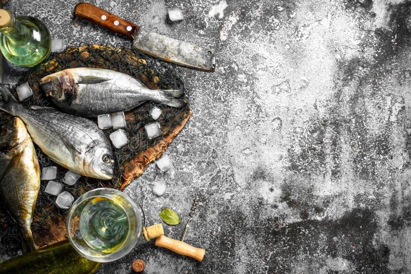 Ny Dorado fisk med iskuber och vinexponeringsglas arkivbild