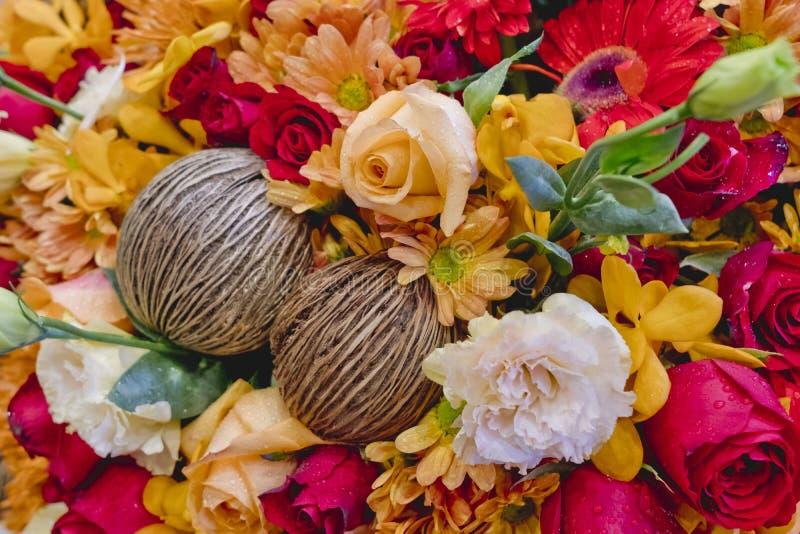 Ny färgrik blommabakgrundstextur royaltyfri fotografi