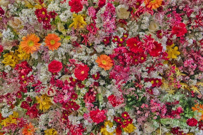 Ny färgrik blommabakgrundstextur royaltyfria bilder
