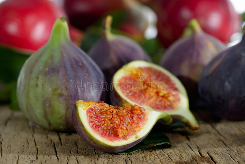Ny fikonträd och granatäpple royaltyfri fotografi