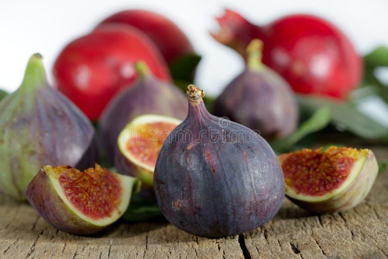 Ny fikonträd och granatäpple royaltyfri bild