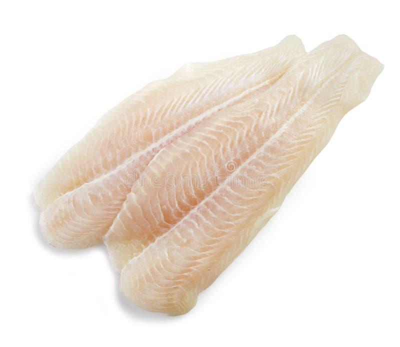 Ny filé för rå fisk royaltyfria foton