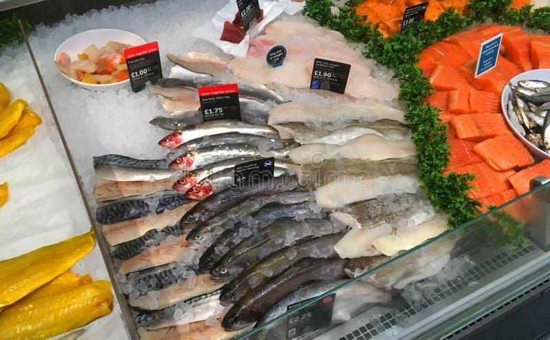 ny fisk Fiskräknare i en stormarknad royaltyfri illustrationer