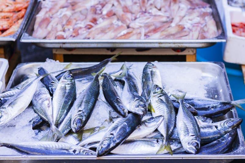 Ny fisk och havs- till salu i fiskmarknaden av Catania, Sicilien, Italien arkivbilder