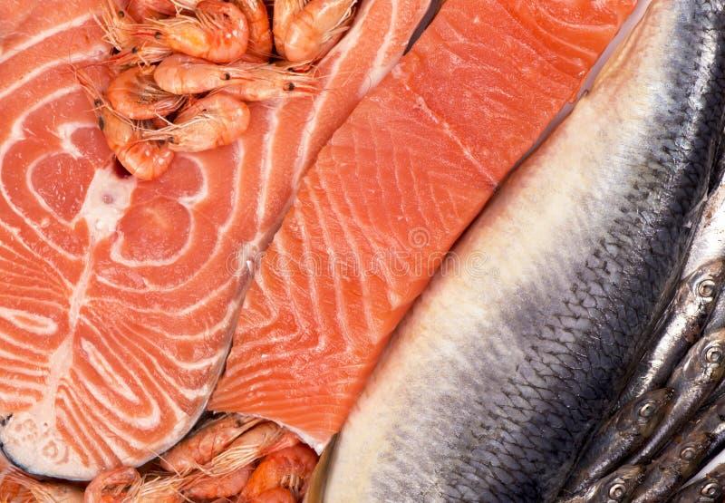 Ny fisk och räka royaltyfria bilder