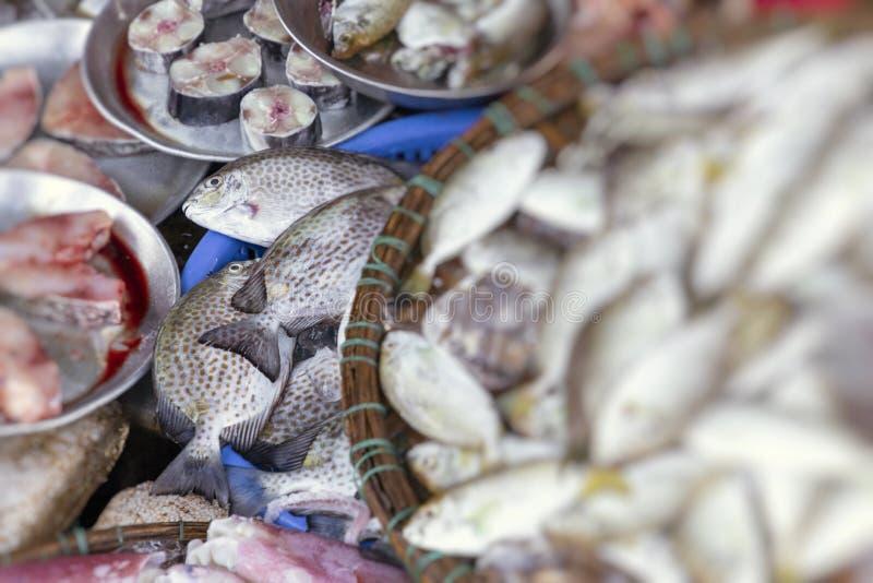 Ny fisk p? den lokala traditionella marknaden i ton, Vietnam Selektivt fokusera royaltyfri foto