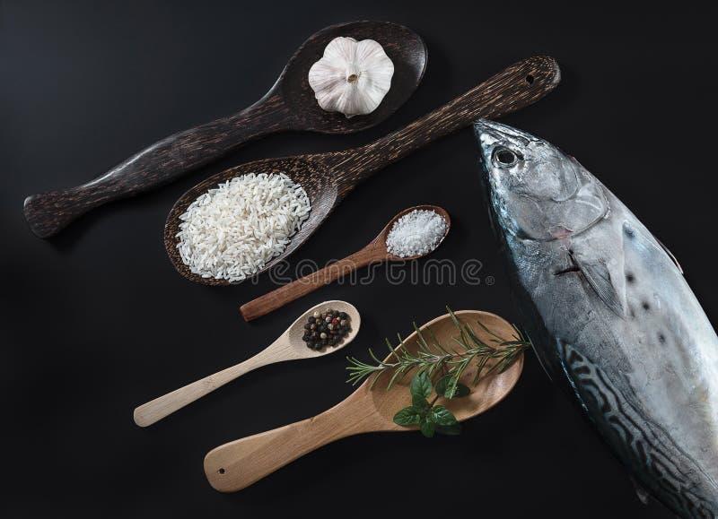 Ny fisk, ris och kryddor royaltyfri bild