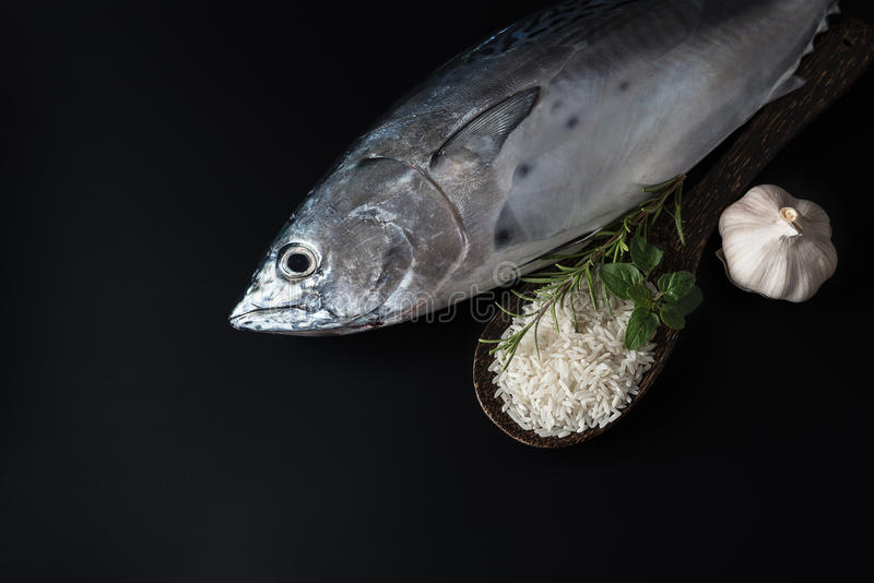 Ny fisk, ris och kryddor fotografering för bildbyråer