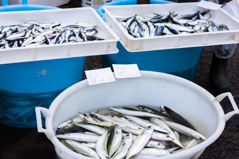Ny fisk som är till salu i fiskmarknaden av Catania, Sicilien, Italien arkivbilder