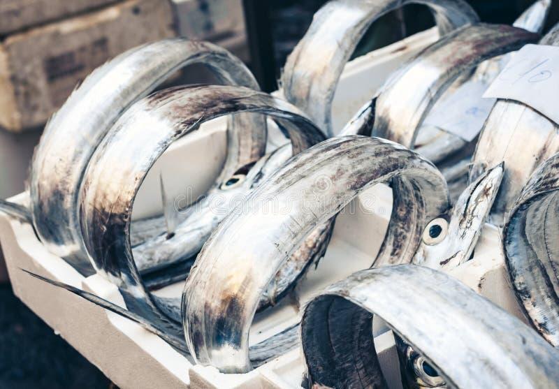 Ny fisk som är till salu i fiskmarknaden Pescheria av Catania, Sicilien, Italien royaltyfria bilder