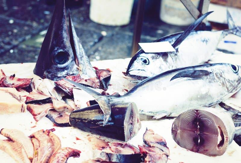 Ny fisk som ?r till salu i fiskmarknaden Pescheria av Catania, Sicilien, Italien fotografering för bildbyråer