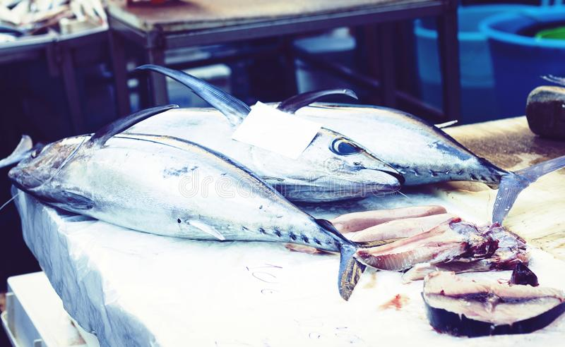 Ny fisk som ?r till salu i fiskmarknaden Pescheria av Catania, Sicilien, Italien royaltyfria bilder