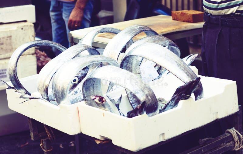 Ny fisk som ?r till salu i fiskmarknaden Pescheria av Catania, Sicilien, Italien royaltyfri bild
