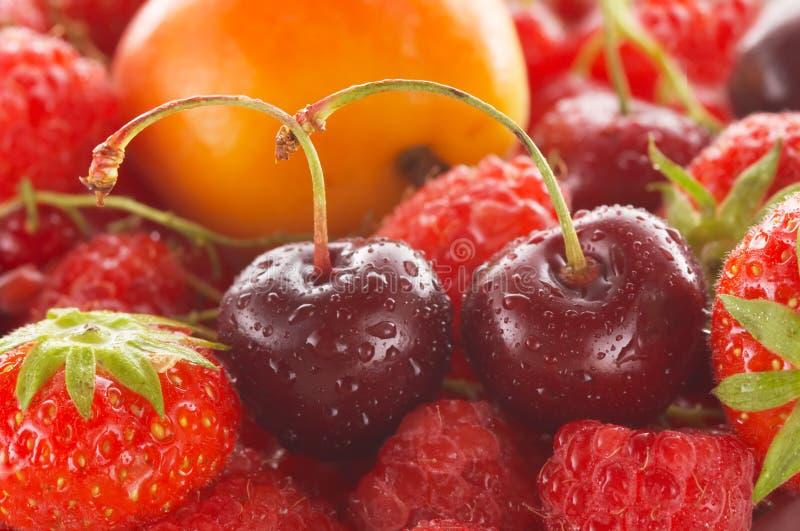 Download Ny frukt arkivfoto. Bild av gourmet, surt, näring, droppe - 976460