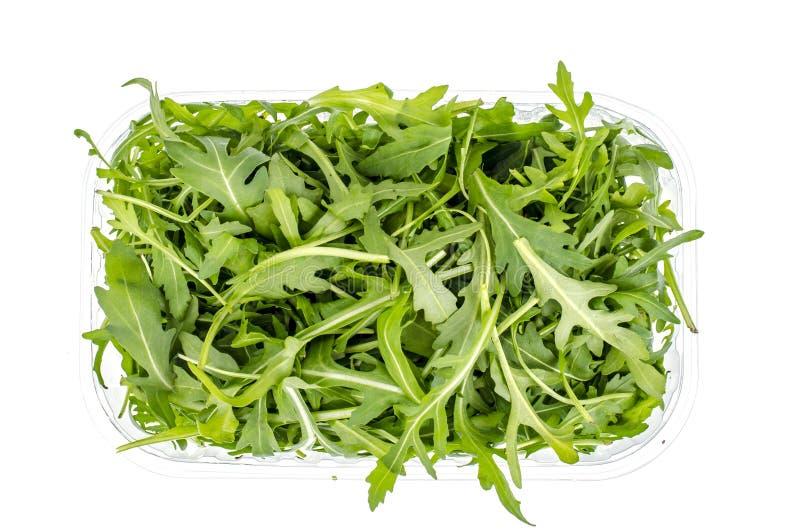 Ny grön arugula i packen som isoleras på vit bakgrund royaltyfria bilder