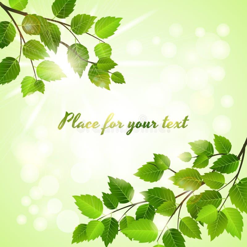 Ny grön bakgrund med vårsidor royaltyfri illustrationer