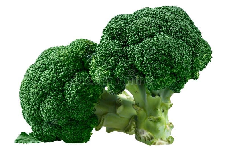 Ny grön broccoli som isoleras på vit bakgrund royaltyfri foto