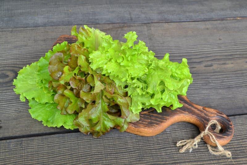 Ny grön isbergsallad, grönsallatoakleaf, batavia blandade arkivfoto