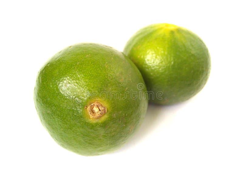 Ny grön limefrukttextur royaltyfri fotografi