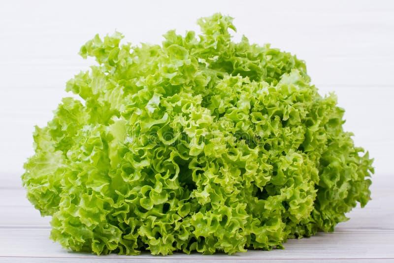 Ny grön lockig grönsallatsallad arkivbild