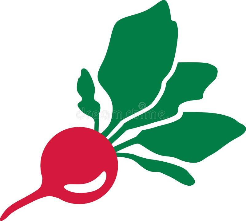 Ny grönsak för rädisa royaltyfri illustrationer
