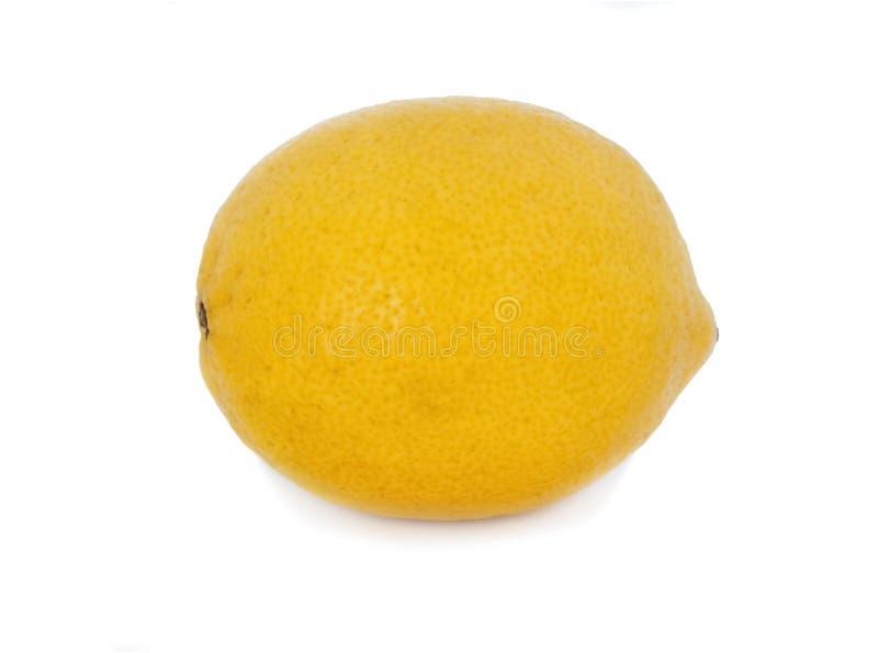 Ny hel citron isolerat vitt bakgrundsfoto stock illustrationer