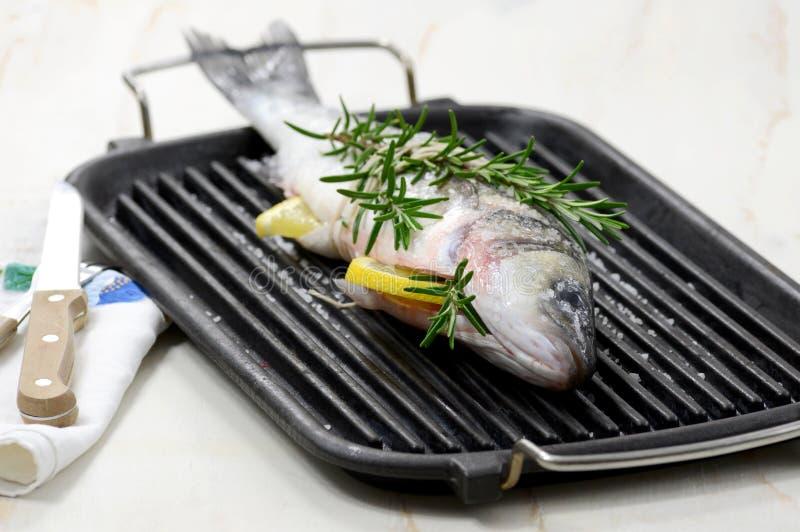 Hel fisk på en grilla arkivfoton
